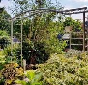 Edelstahlschlosserei Nappenfeld aus Mühlheim realisierte in Mülheim ein Rosen-Rankgerüst im Garten eines Einfamilienhauses